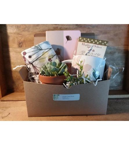 Quiet Time Gift Box