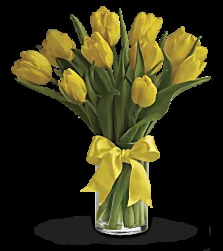Sunny side Tulips