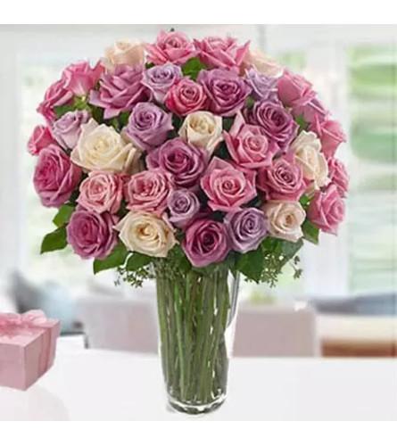 Pastel Rose Perfection