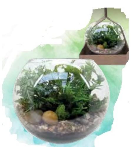 Planter - Rosebowl Terrarium