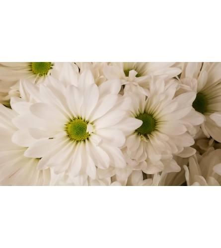 Florist Choice Gift