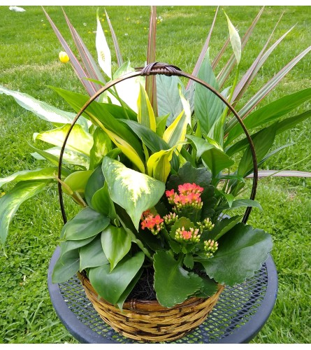 Beautiful Basket Garden