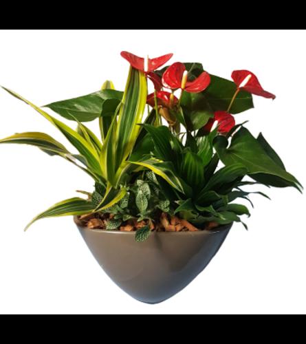 Tropical Elegant Planter