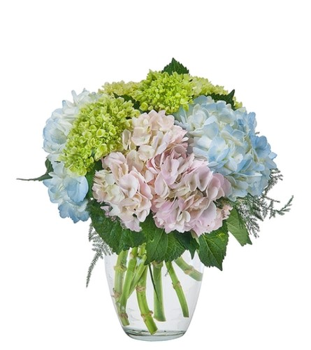 Southern Charm Mother's Day Flowers