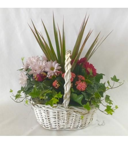 Angie wicker planter