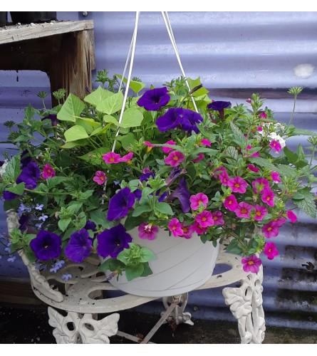 Pastel Hanging Basket