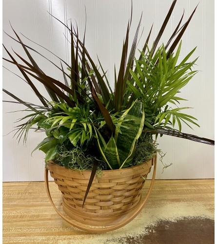 Florists Choice-Planter in Basket  A