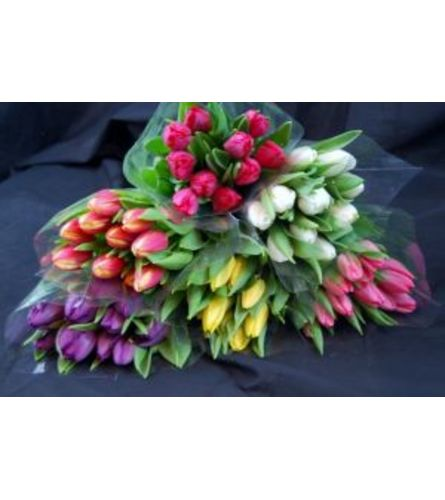 Wrapped Tulips 10, 20 or 30 Stems