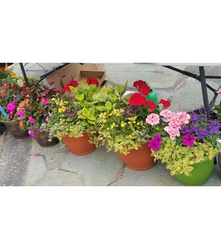 Outdoor Shady Planter
