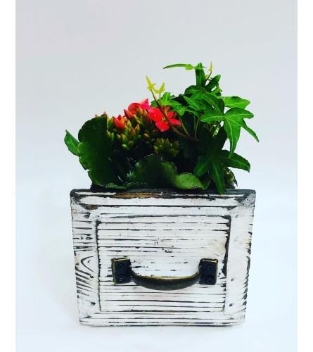 Rustic Small Planter