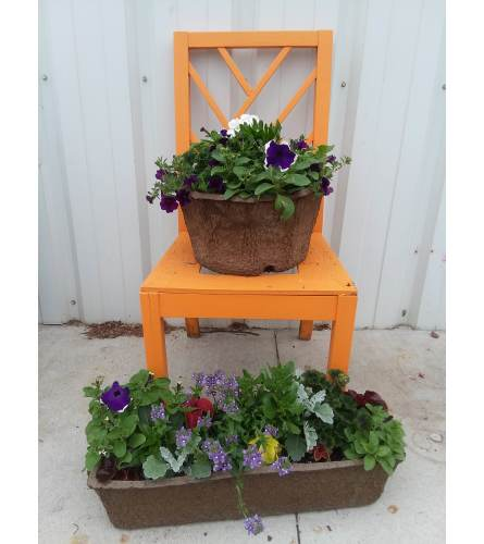 Greenhouse Round or Rectangle Pulp Planter - Large