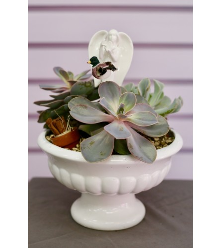 Succulent Fairy Garden  in Ceramic Pot