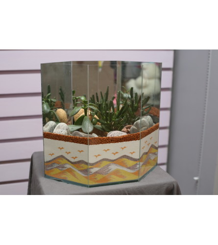 Cactus & Sand Design Dish Garden