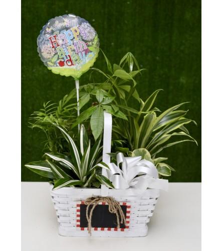 Fresh Country Garden Basket with 'Happy Birthday' Balloon