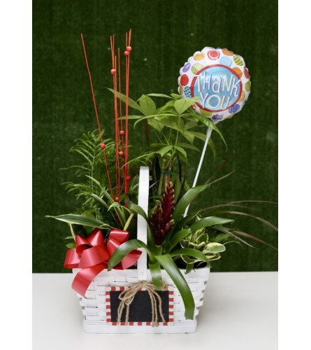 Flowering & Green Plants in a White Basket with Thank You Balloon