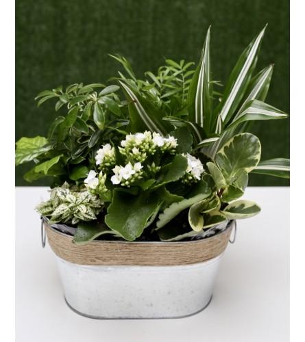 Country Garden Green Tin Basket
