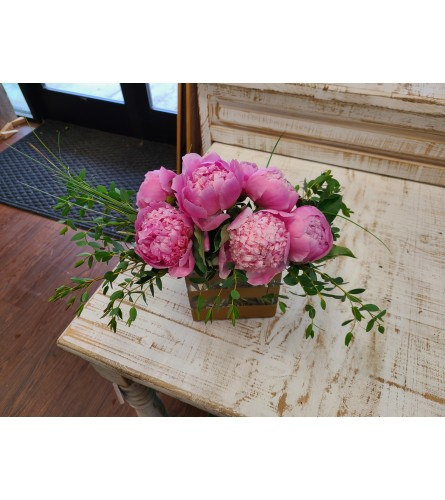 Fan Favorite: ALL Peonies