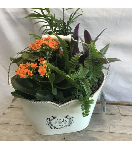 Ruth Country Tin Planter