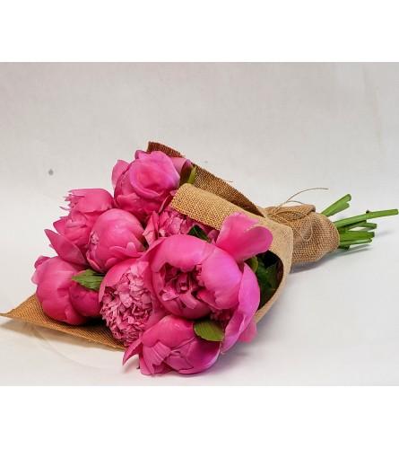 10 pink Peonies