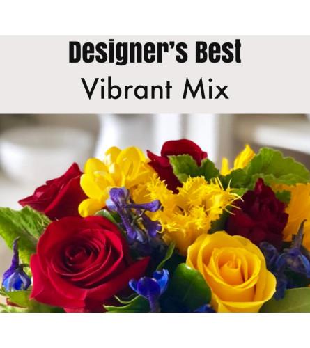 Designer's Best-Vibrant