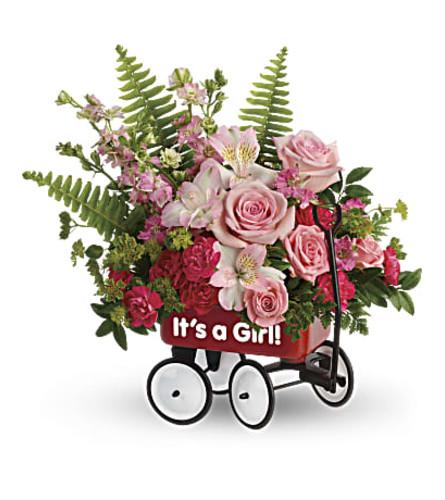 Welcome Beautiful baby girl Bouquet