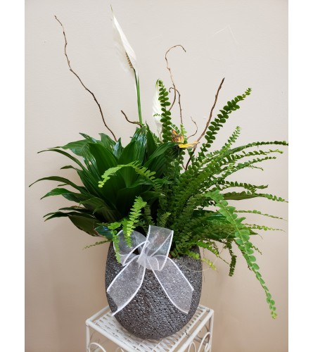 Peaceful Peace Lily with Tropicals