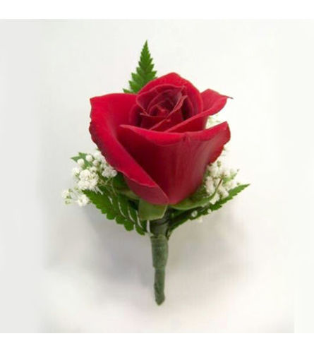 Perfect Red Rose Bout