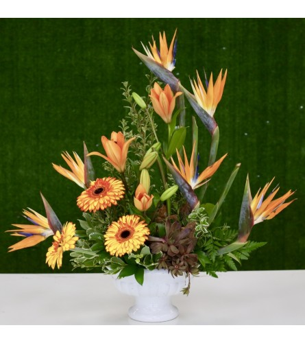 Tropical Bird Of Paradise Floral Arrangement