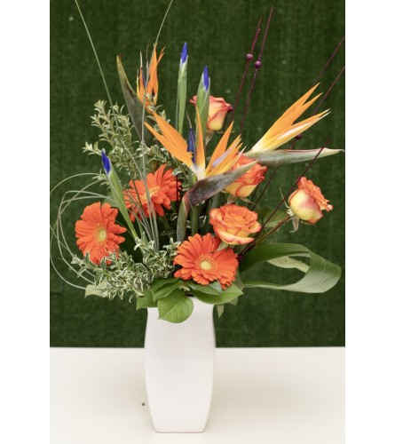 Loyal Love Floral Arrangement in a Vase