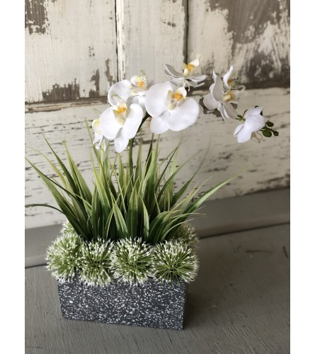Orchid Among Grass in a Marbled Vase
