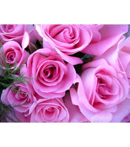 DELUXE PINK ROSES (HALF DOZEN TO 1.5 DOZEN)