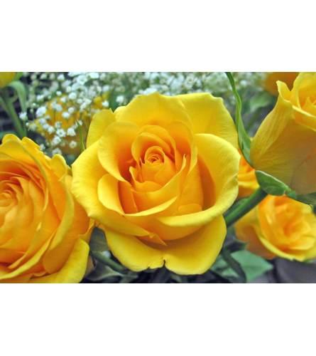 DELUXE YELLOW ROSES (HALF DOZEN TO 1.5 DOZEN)