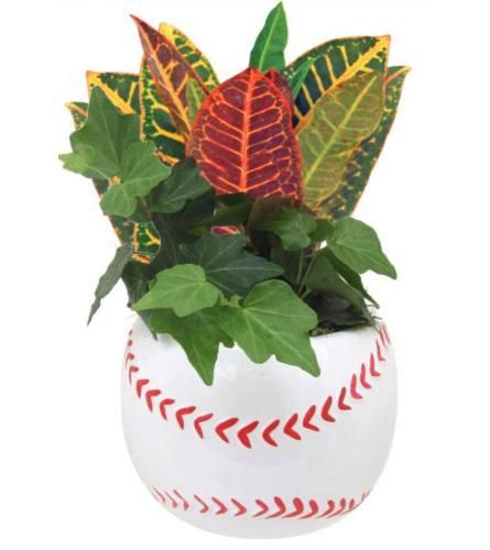 Baseball Green Planter Garden