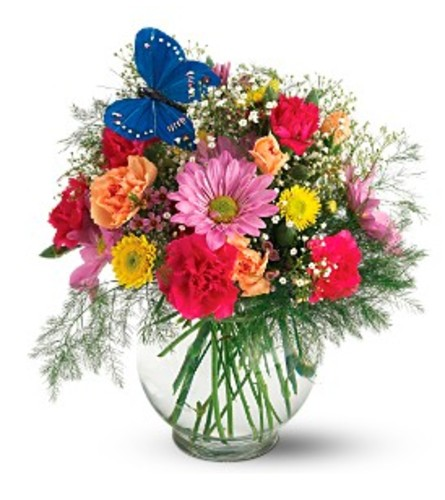 Teleflora's Butterfly Blossoms Vase Arrangement