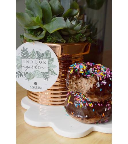 Father's Day Planter with Gluten Free Donuts