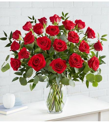 Two Dozen Red Glamour Roses