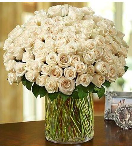 Grand Splendor 150 White Roses