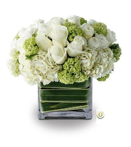 White and Green Elegance