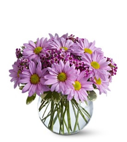 Delightfully Daisy Vase Arrangement
