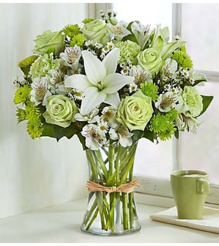 Green Serenity Arrangement Miami Fl Florist