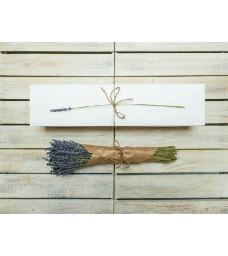 Dried Lavender Bouquet - France