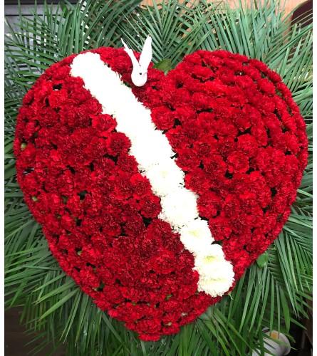 Carnation Broken Heart