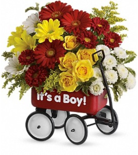 Baby's Wow Wagon by Teleflora at Bow River Flower Atelier