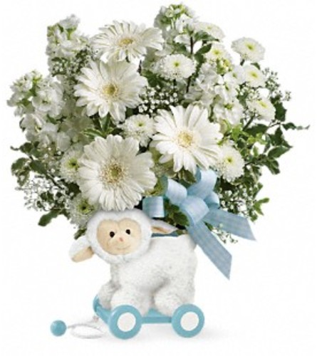Sweet Little Lamb Boy by Teleflora at Bow River Flower Atelier