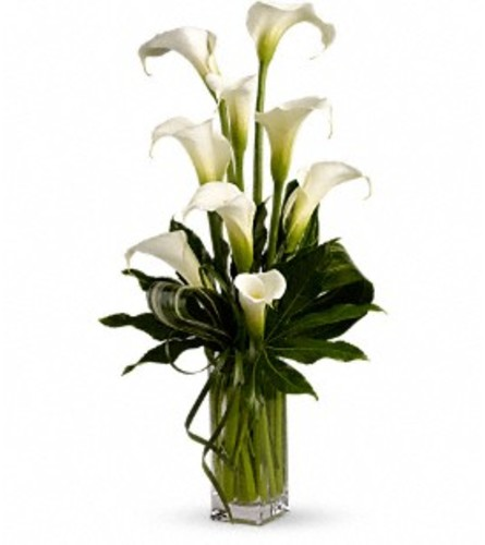 My Fair Lady by Teleflora at Bow River Flower Artelier