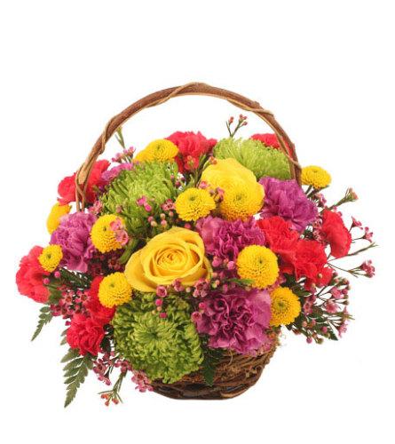 Colorfulness Basket