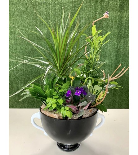 Exquisite Garden Planter in a Premium Hand Blown Polish Vase