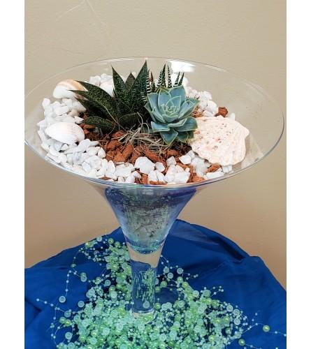 Martini Succulent