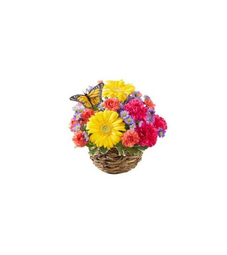 Butterfly Nest Bouquet