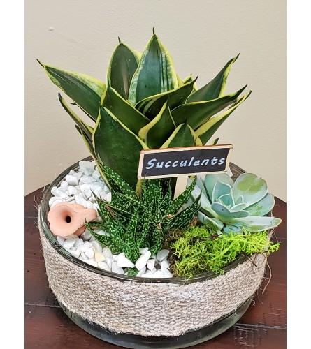 Burlap Succulent